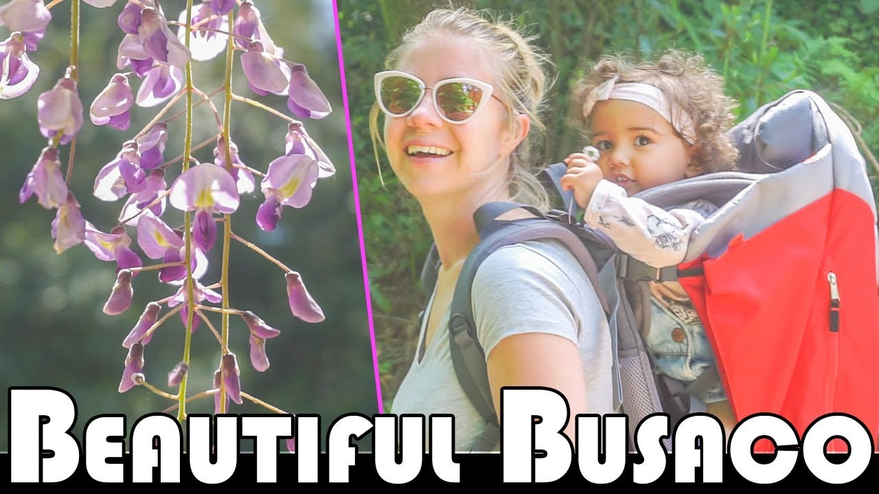 IT IS A REALLY AMAZING PLACE – BEAUTIFUL BUSSACO – FAMILY DAILY VLOG