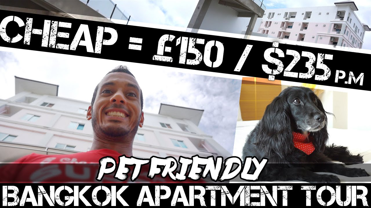 Renting A Cheap Bangkok Apartment #PET FRIENDLY